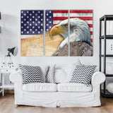 The Bald Eagle 3 Piece Canvas