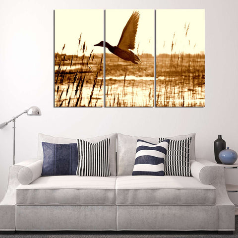 Colorful Feathers 3 Piece Canvas