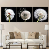 Dandelion 3 Piece Canvas