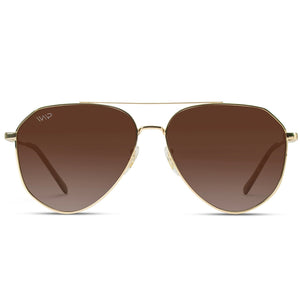 Remy Geometric Polarized Metal Frame Aviators Sunglasses