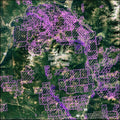 view recent MTO data in Google Earth