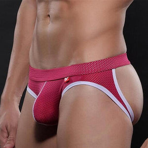New Men Underwear Briefs Fashion Color Pants Cheap Modal Men Underwear multi-color Breathable Mesh underpants male