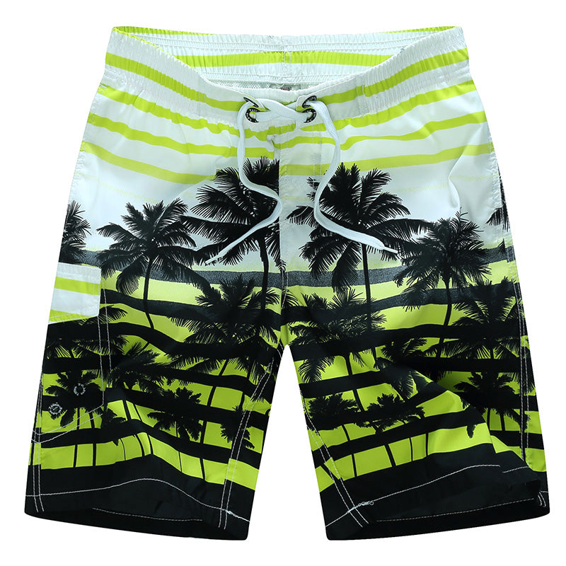 tailor pal love 2017 new summer hot men beach shorts quick dry coconut tree printed elastic waist 4 colors M-6XL AYG219