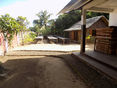 Vanilla Curing Stations In Tonga