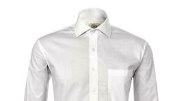 Regular Fit Formal Shirts