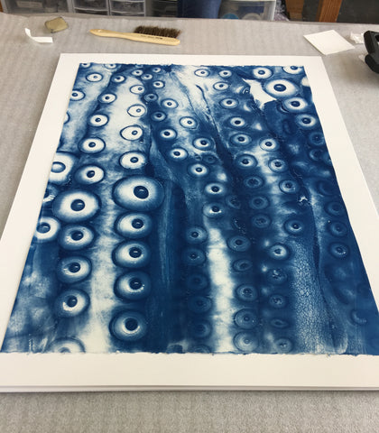 Brian Buckley cyanotype photographic prints archival framing