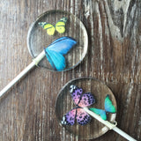 Butterfly Candy Sucker Lollipop Favors - Never Forgotten Designs