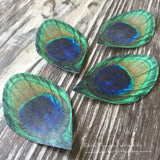 Edible Peacock Feathers on Wafer Paper 1.5 Inch - Never Forgotten Designs