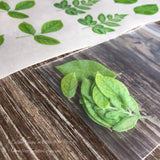 Custom Leaves for Flower Making on Edible Wafer Paper - Never Forgotten Designs
