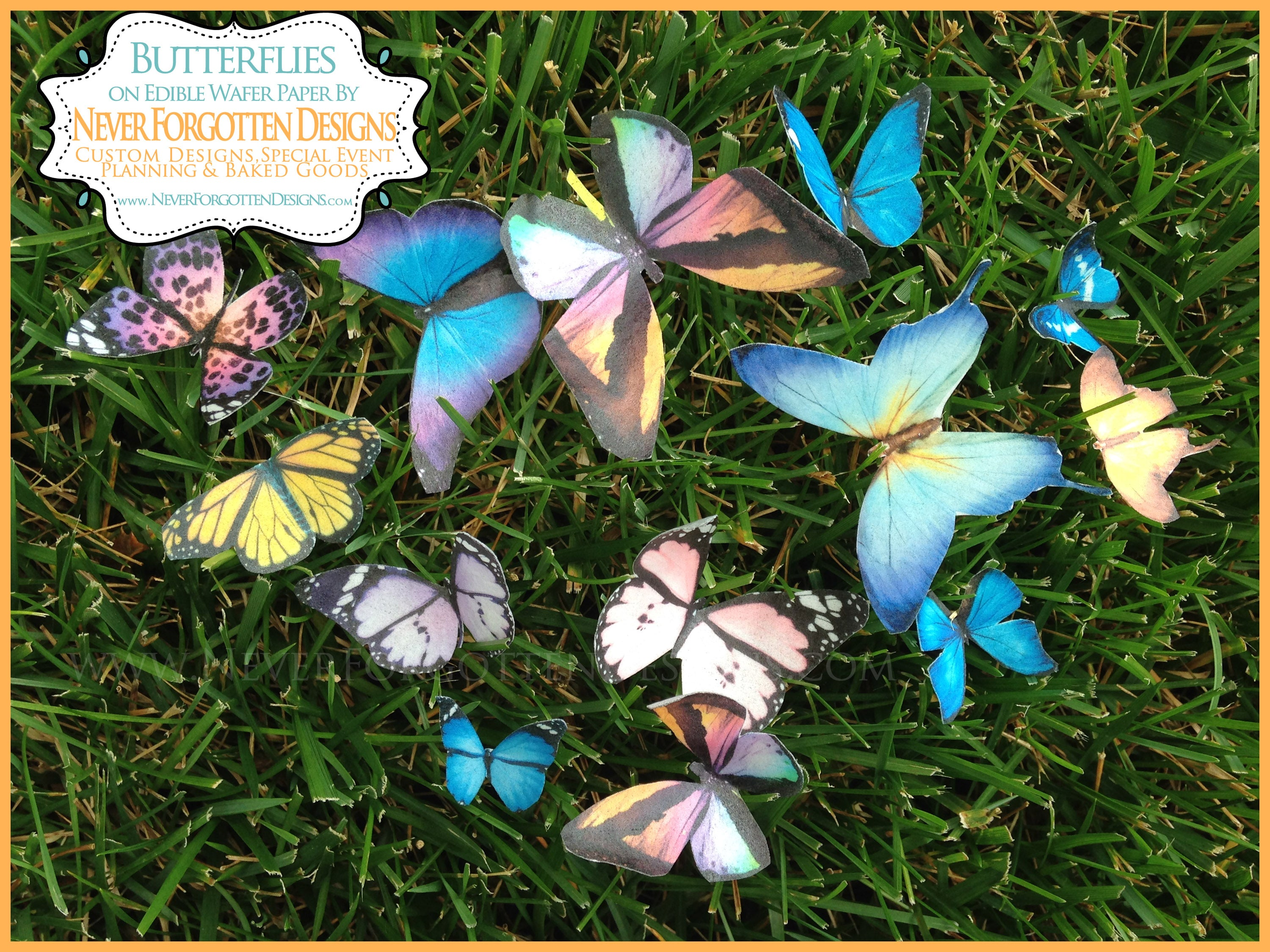 Colorful Edible Butterflies on Wafer Paper