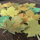 Edible Large Autumn Leaves