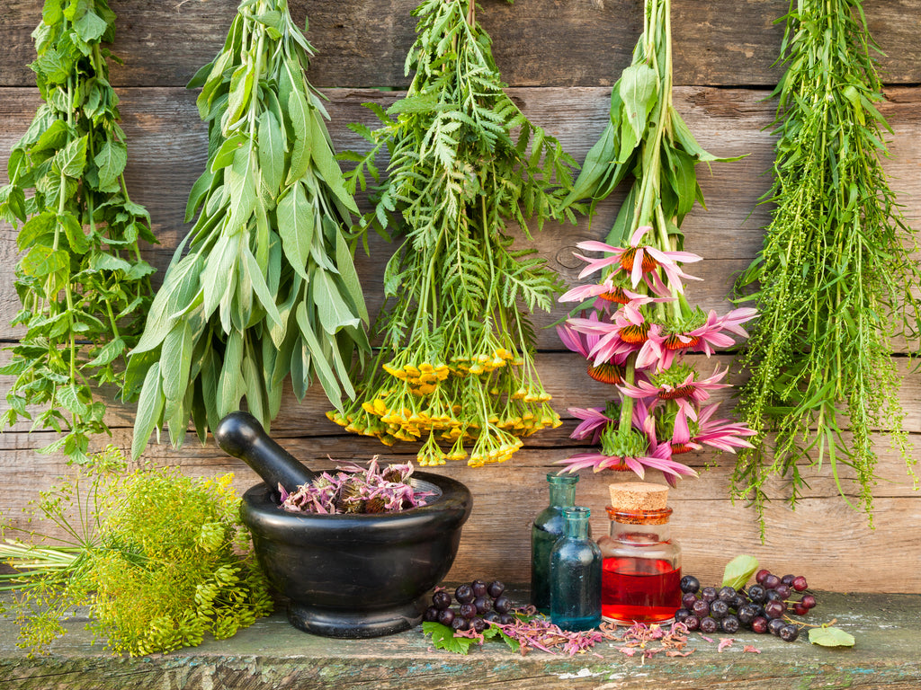 A guide on how to use Magickal Herbs
