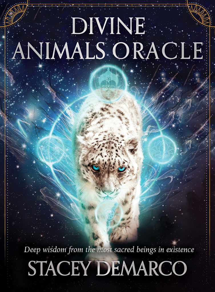 Divine Animals Oracle  - Stacey Demarco. Inspired By 3 Australia