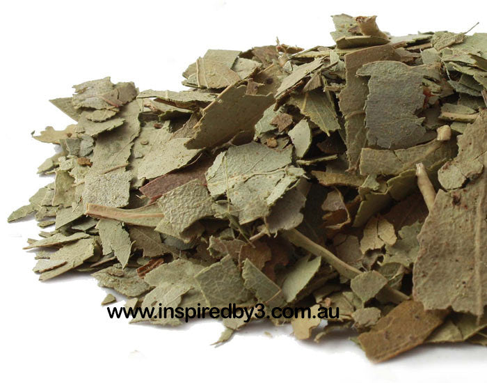 Eucalyptus Leaves 20g - Good Health.