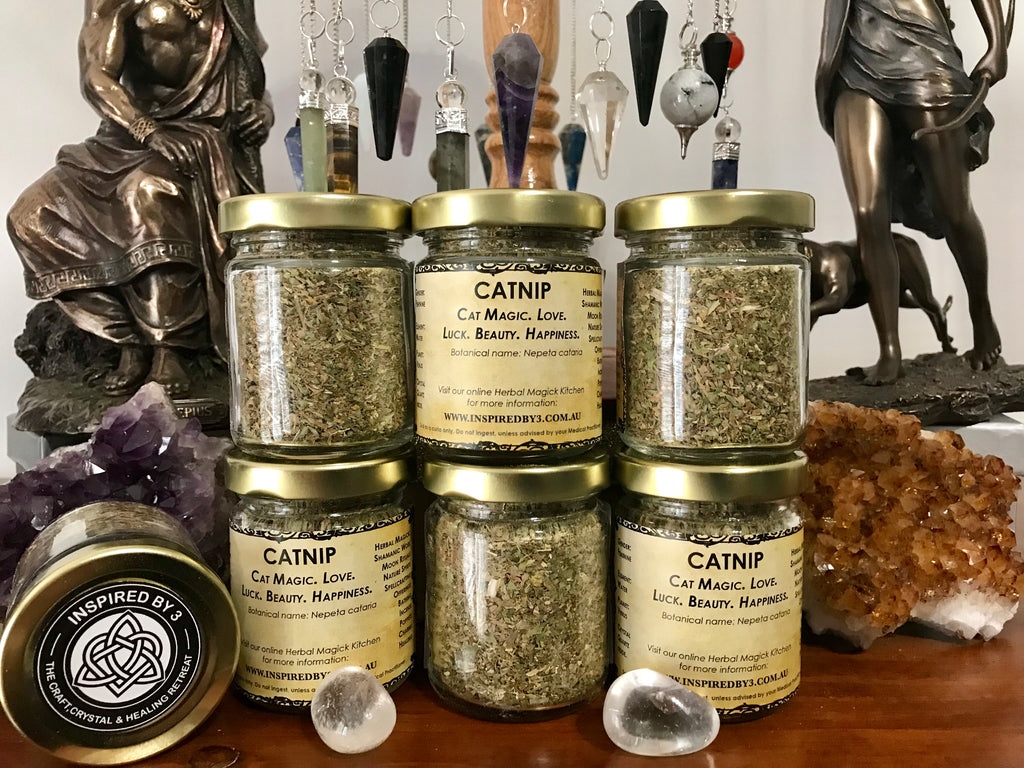 Catnip Herb Organic - Cat Magick. Love. Beauty & Happiness.