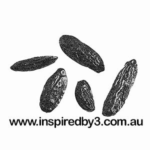Tonka Beans x5 - Good Luck Charms. Love. Wishes.