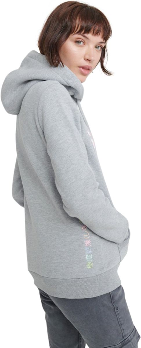 Superdry Classic Rainbow Embroidered Hoodie Grey