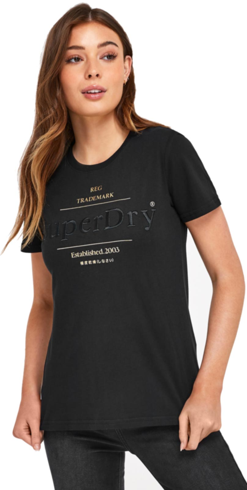 Superdry Established T-Shirt Black