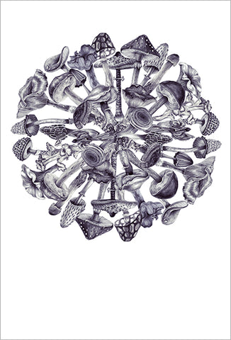 Karina Eibatova Drawing Mushrooms