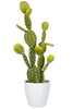 Faux Cactus in White Pot