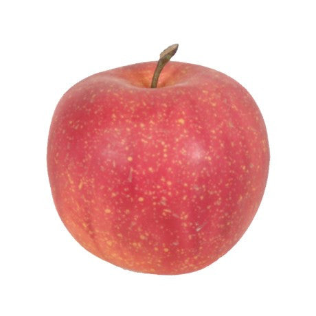 Apple 'Cox's pippin'