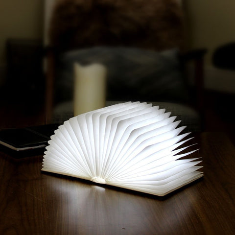 Mini LED Smart BookLight Gingko