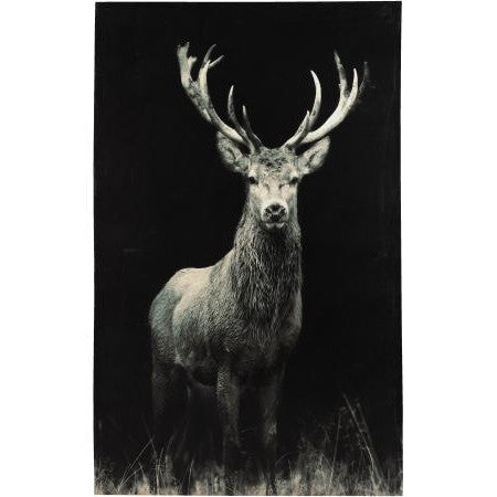 Stag Canvas On Dark Background Small