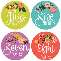 Little Artist Monthly Baby Stickers