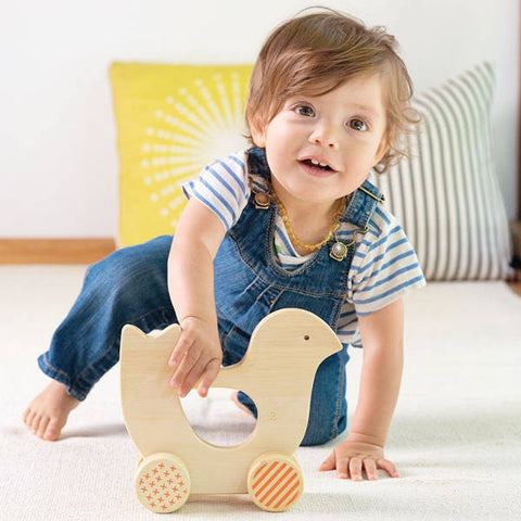 Bamboo Birdy Mighty Push Toy