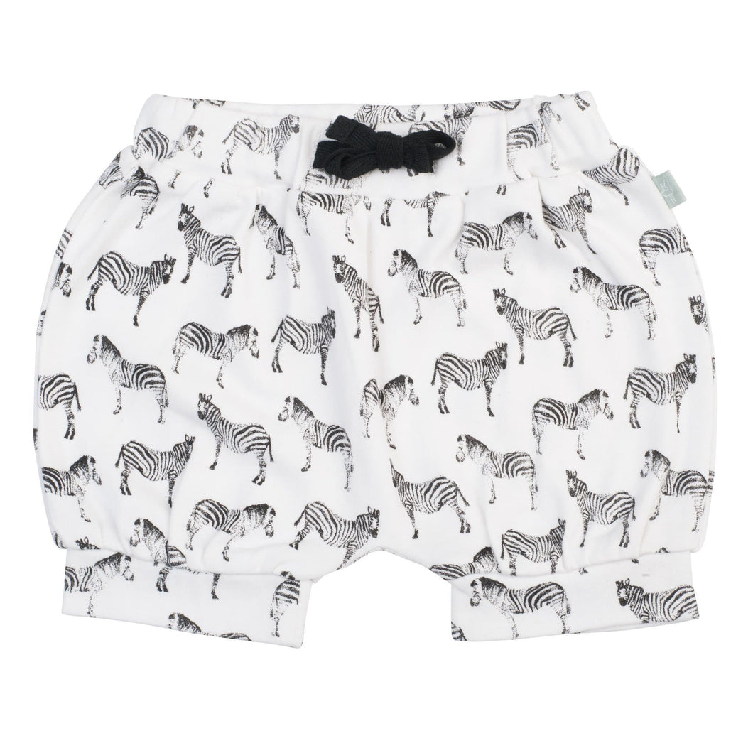 bloomer shorts | zebras