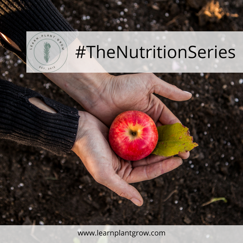 #TheNutritionSeries