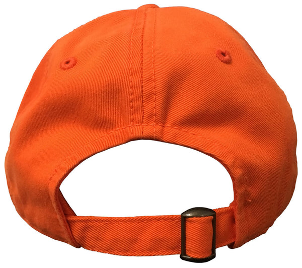 Auburn Science and Mathematics Orange Cap