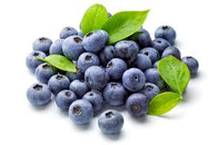 berry was ranked #1 in antioxidant activity by the USDA compared to 40 common fruits and vegetables.