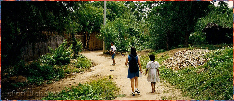 Village path crossing Oaxaca Mexico
