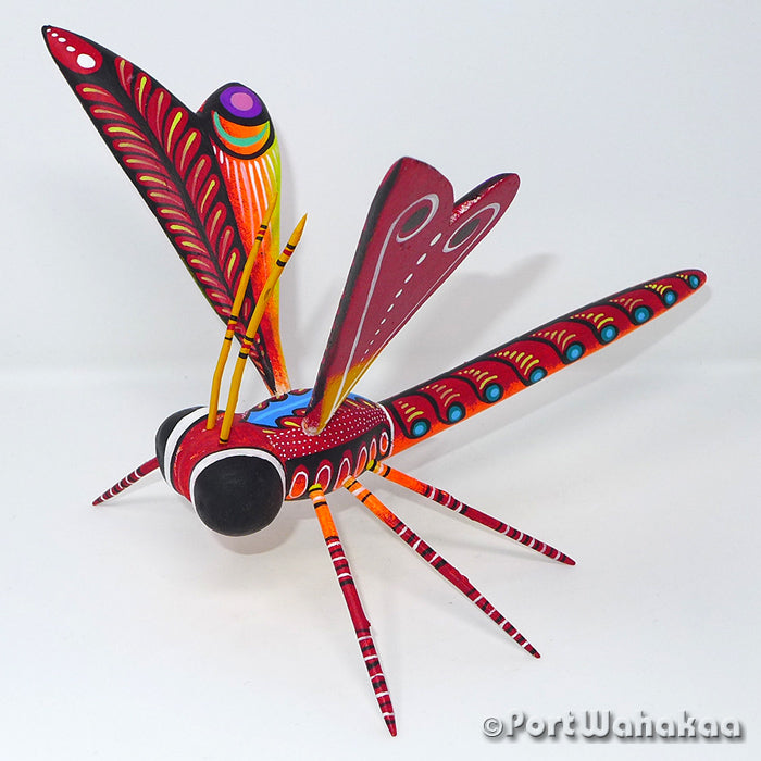 Fiery Dragonfly - Port Wahakaa