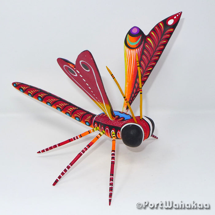 Fiery Dragonfly Oaxacan Carving Artist - Rogelio Blas Port Wahakaa Carving Medium Large, Dragonfly, Insect, San Pedro Cajonos