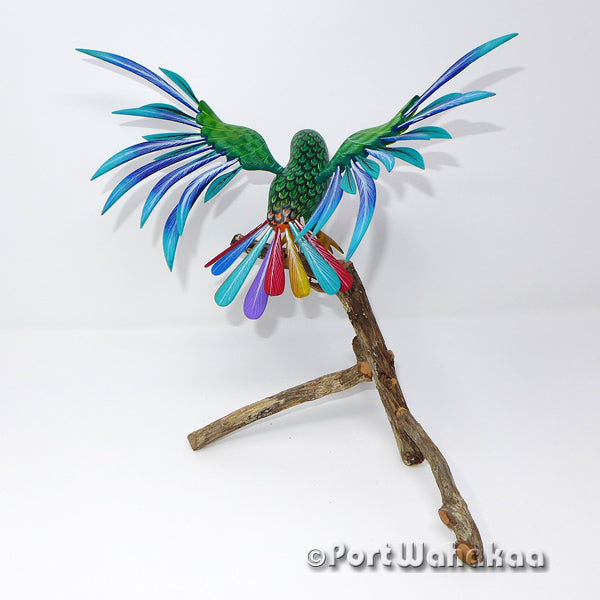 Emerald Forest Parrot Artist - Tribus Mixes Port Wahakaa Oaxacan Carving Mexico Folk Art