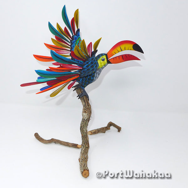 Toco Toucan Tropical Oaxacan Carving Artist - Tribus Mixes Port Wahakaa Avia, Carving Large, Toucan