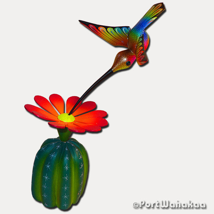 Orange Cacti Rainbow Gold Hummingbird - Port Wahakaa