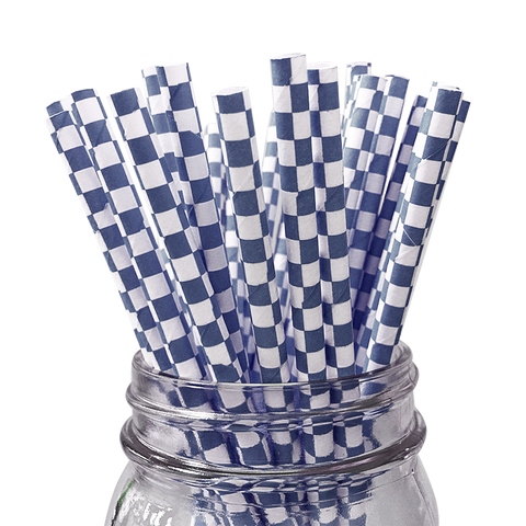 Blue Checkered 25pc Paper Straws