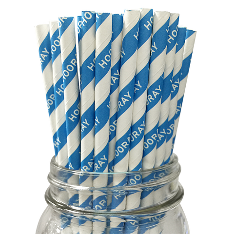 Blue Hooray 25pc Paper Straws.
