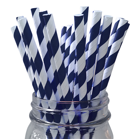 Dark Navy Striped 25pc Paper Straws