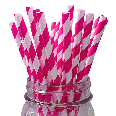 Fuchsia Striped 25pc Paper Straws