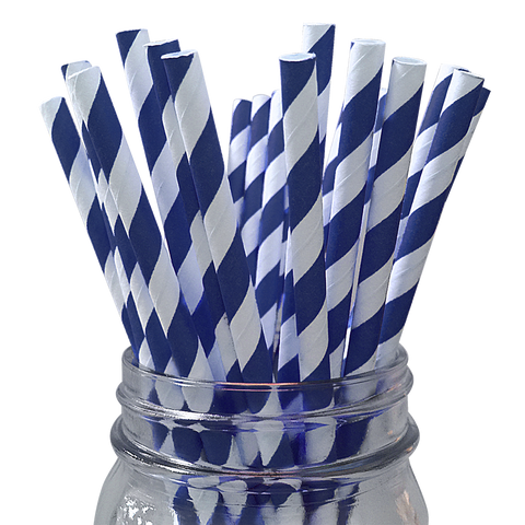 Navy Striped 25pc Paper Straws