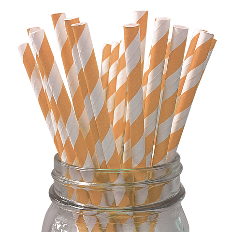 Peach Striped 25pc Paper Straws