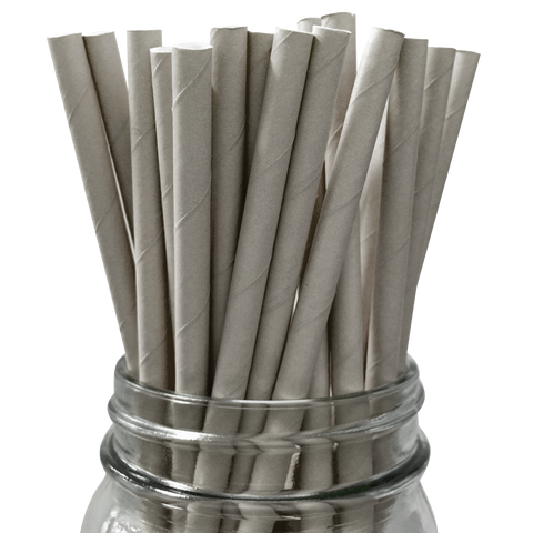 Grey Solid 25pc Paper Straws