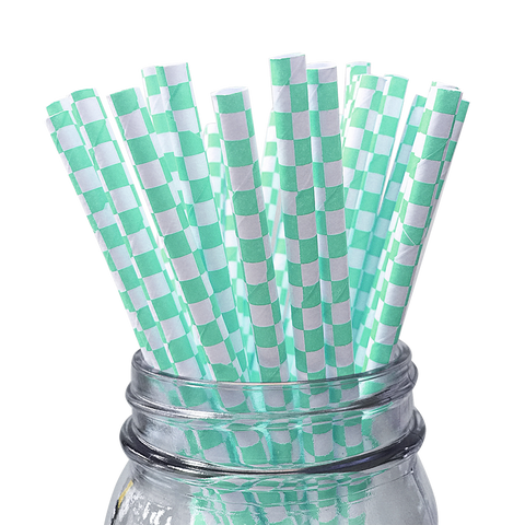 Seafoam Checkered 25pc Paper Straws