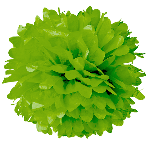 "6"" Key Lime Tissue Pom Poms."