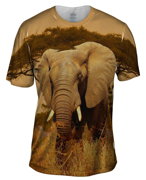Elephant Savannah Mens T-Shirt