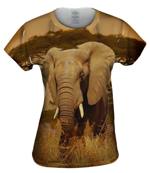 Elephant Savannah Womens Top